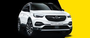 Opel PSA Retail Doctor Esquerdo